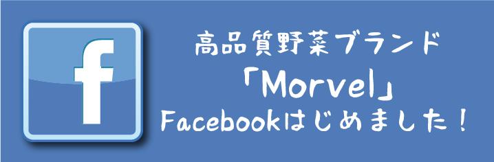 高品質野菜ブランド「Morvel」facebookのお知らせ